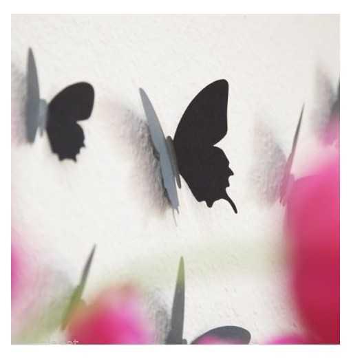 Pack 12 papillons - Noir