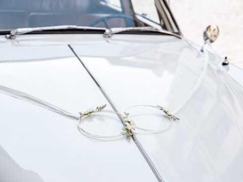 Kit décoration voiture anneaux